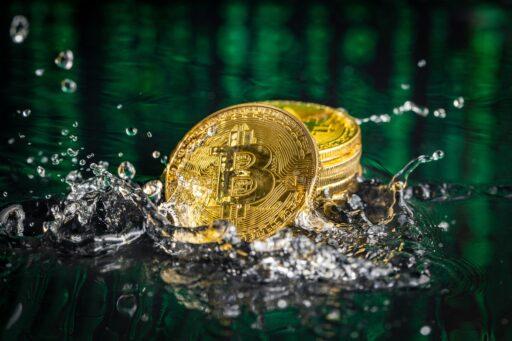"""Justin Sun compra """"Golden Whale Pass"""" en Bitcoin Miami para obtener un pase de por vida"""